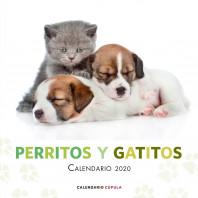 Calendario Perritos y gatitos 2020
