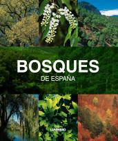 bosques-de-espana-lunwerg-medium_9788497857482.jpg