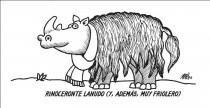 46_1_RinoceronteLanudo.jpg
